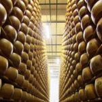 Fromage italien : Parmesan contre Grana Padano
