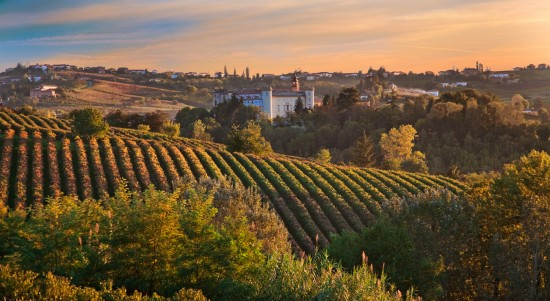 Best Gourmet Restaurants in Piedmont